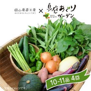 岡山産直 定期野菜セット おまかせ10品×4回分...
