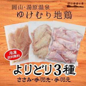 お中元ギフト 湯原温泉ゆけむり地鶏 選べる3種セット 送料無料|jshop-web