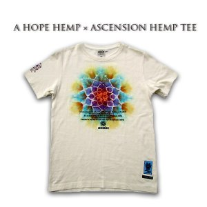 A HOPE HEMP × ASCENSION HEMP TEE 曼荼羅「MANDARA/BFM /Draw the yen」 as-583|juice16