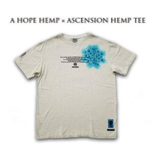 A HOPE HEMP × ASCENSION HEMP TEE 曼荼羅「 BFM/Draw the yen」 as-587|juice16