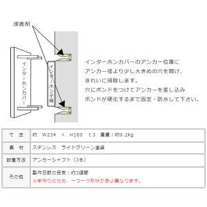 生き物インターホンカバー表札 カメレオンIPC-51|juicygarden|05
