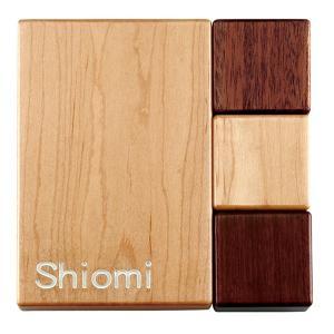 表札 木製 木 15cm おしゃれ 洋風 「 WPCプレシャスウッドネームプレート ON603 」|juicygarden