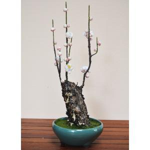 盆栽 梅 H420mm フェイクグリーン 観葉植物 人工観葉植物 造花 BONSAI ボンサイ|juke-store