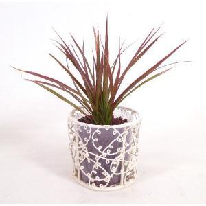 ワイヤーポットS ハイドロコーン植え 観葉植物/ハイドロカルチャー/水耕栽培/インテリアグリーン|julli