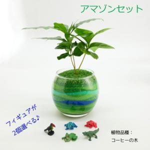 フィギュアが選べる♪ カラーサンド植え 水さし付【アマゾンセット】 観葉植物/ハイドロカルチャー/水耕栽培/インテリアグリーン|julli