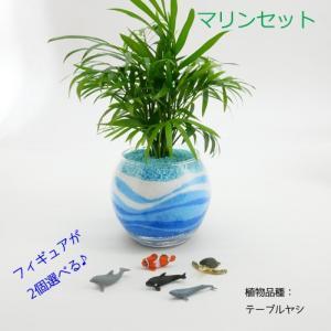 フィギュアが選べる♪ カラーサンド植え 水さし付【マリンセット】 観葉植物/ハイドロカルチャー/水耕栽培/インテリアグリーン|julli