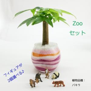 フィギュアが選べる♪ カラーサンド植え 水さし付【ZOOセット】 観葉植物/ハイドロカルチャー/水耕栽培/インテリアグリーン|julli