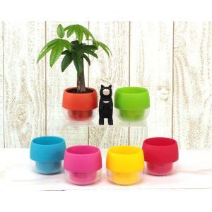 キュートビビの鉢 観葉植物/ハイドロカルチャー/水耕栽培/インテリアグリーン|julli