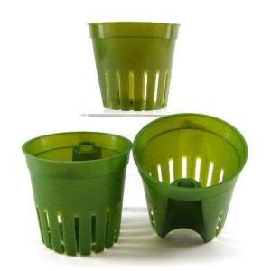 インナーポット キュート(6Φ) 観葉植物/ハイドロカルチャー/水耕栽培/インテリアグリーン|julli