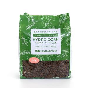 ハイドロコーン 小粒 2L 観葉植物/ハイドロカルチャー/水耕栽培/インテリアグリーン|julli