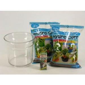 ちょっとお得なハイドロコーン植替えキット 観葉植物/ハイドロカルチャー/水耕栽培/インテリアグリーン|julli