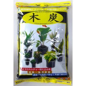 木炭 2L 観葉植物/ハイドロカルチャー/水耕栽培/インテリアグリーン|julli