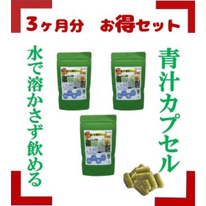 青汁 乳酸菌 130億超 国産 大麦若葉 モリンガ たもぎ茸 食物繊維 健康 ダイエット 青汁カプセル 送料無料|jun-global