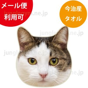 リアルモチーフタオル:三毛猫