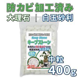 KeepStone(キープストーン) 400g 防カビ化粧石 防カビ 観葉植物のカビを防止する防カビ剤を浸透させた大理石の化粧石 化粧砂利 虫予防 カビ予防 B-S400 junsendo