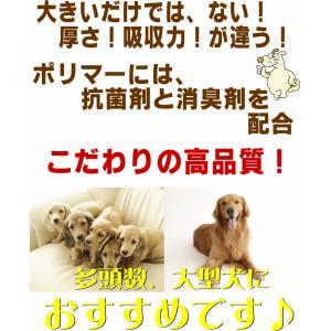 業務用 ペットシーツ ダブルワイドサイズ 100枚 送料無料(スーパーワイド 国産 犬 ペットシート トイレ 大判 厚型)|jushopy|03