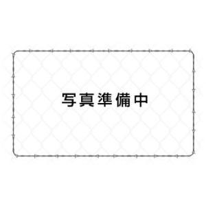 送料無料 Bodydoctor ボディドクター (ボディードクター) ドクターパッド  セミダブル|juuki