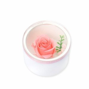 プリザーブドフラワー 彼女 妻 お母さん ピンク バラ 誕生日プレゼント 記念日 ギフトラッピング 母の日 春コーデ 入学祝い|jwell