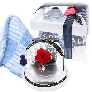 バレンタイン ディズニー ハンカチ&フラワーセット お花ソムリエ メンズ 彼氏 男性 誕生日プレゼント ギフト|jwell
