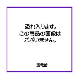 【Panasonic パナソニック】コスモシリーズワイド21 新金属コンセントプレート2型[WTF9201]|jyakudenkan