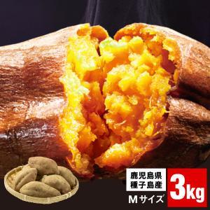 ポイント3倍 さつまいも 鹿児島県種子島産 安納芋 3kg ...