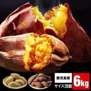 安納芋 紅はるか さつまいも 鹿児島 各3kg 合計 6kg 1箱 M・Lサイズ混載 食べ比べ