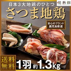 ギフト さつま地鶏 約1.3kg 送料無料 鹿児島県大隅産 日本3大地鶏 もも むね ささみ 手羽 ガラ|jyonetsubatake