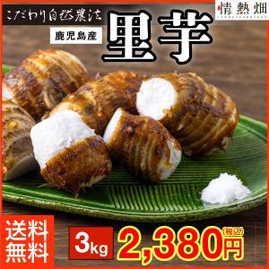 里芋 品種:クロガラ 鹿児島県垂水産 3kg 送料無料 特別栽培 S〜Lサイズ jyonetsubatake