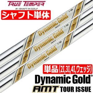 トゥルーテンパー ダイナミックゴールド AMT TOUR ISSUE (AMT ツアーイシュー) スチールシャフト単品 [2I用、3I用、4I用、ウェッジ用]