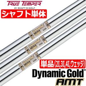 トゥルーテンパー ダイナミックゴールド AMT スチールシャフト単品 [2I用、3I用、4I用、ウェッジ用]