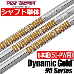 トゥルーテンパー DynamicGold 95 (ダイナミックゴールド95) スチールシャフト単品 [6本組/5I-PW用]
