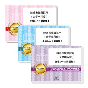 綾瀬市職員採用(大学卒程度)教養試験合格セット(3冊)
