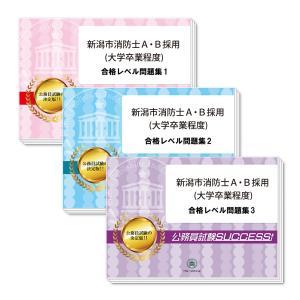新潟市消防士A・B採用(大学卒業程度)教養試験合格セット(3冊)|jyuken-senmon