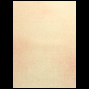 明日香 半懐紙5色セット jyukodo