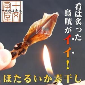 日本海産ほたるいか素干し 25g×2袋 おつまみ 酒の肴 珍味 お試し 食品 おすすめ メール便対応 送料無料 無添加 いか イカ ポイント消化 sos|jyuumonjiya