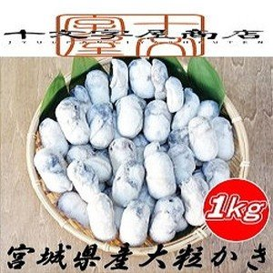 宮城県産大粒ムキ牡蠣/1kg約40粒入り   jyuumonjiya