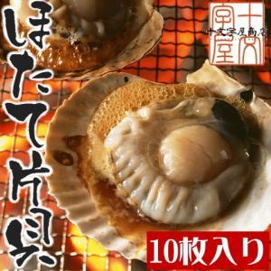 北海道噴火湾産 片貝付き生ホタテ   帆立/ほたて/バーベキュー/BBQ/グラタン/バター焼き jyuumonjiya