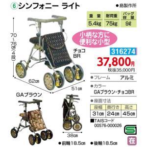 歩行車(屋外) シンフォニー ライト - 東京山海堂|k-1ba