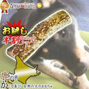 鹿の角 半割 北海道 鹿角 犬のおもちゃ 犬 犬用 噛む おもちゃ おやつ ドッグガム デンタルケア デンタル効果 口臭対策 無添加 壊れない 送料無料 k-city