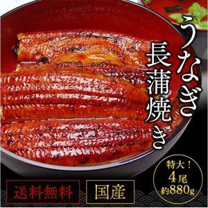 うなぎ 国産 鰻 長焼き 蒲焼 鹿児島県産 220g前後×4尾 送料無料 特産品