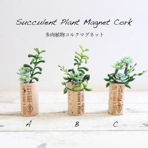 ■商品名:多肉植物 コルクマグネット ■サイズ:A=高さ9.5cm、B=10cm、C=8cm ■特徴...