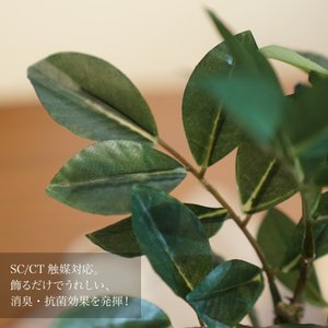 フェイクグリーン 人工観葉植物 造花 ガジュマ...の詳細画像1