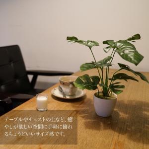 ミニ 観葉植物 造花 フェイク グリーン モンステラ スプリットフィロ 23cm テーブル 光触媒 CT触媒 インテリア リアル 消臭|k-hana|04