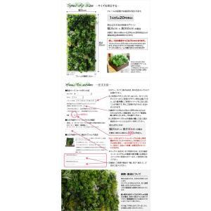 フェイクグリーン サイズ指定自由 壁掛けグリーン ウォールグリーン 人工 観葉植物 造花 光触媒 インテリア リアル|k-hana|10