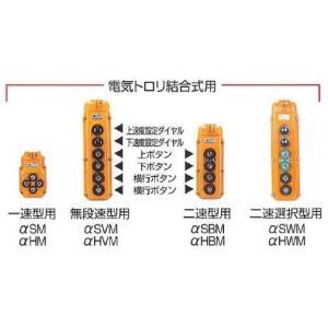 【代引不可】象印チェンブロック αアルファ 4点押しボタン電気チェーンブロック(電気トロリ結合式)無段速型 単相100V用 揚程3m  250kg αsVM-025 k-liftec 02