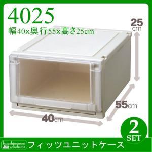 収納ケース 【期間特価】 天馬 Fits フィッツユニットケース 4025 2個組  衣装ケース 収納ボックス TENMA FITS|k-mori