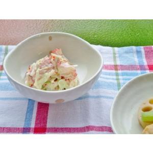 和食器 ドット小鉢 10.8cm 3.5寸 日本製 小鉢 ミニ ボール ドットシリーズ 取り鉢 副菜...