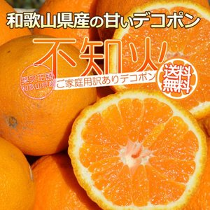 デコポンと同品種 不知火 シラヌヒ デコみかん 10kg 訳...