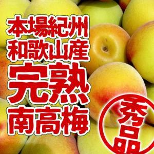本場和歌山県産 紀州南高梅 完熟梅 秀品 5kg (3L以上...
