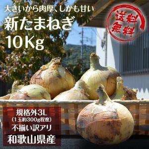 新玉ねぎ たまねぎ 和歌山県産 約10kg 訳あり 送料無料...
